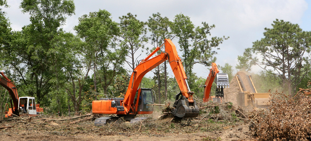 Danville Land Clearing